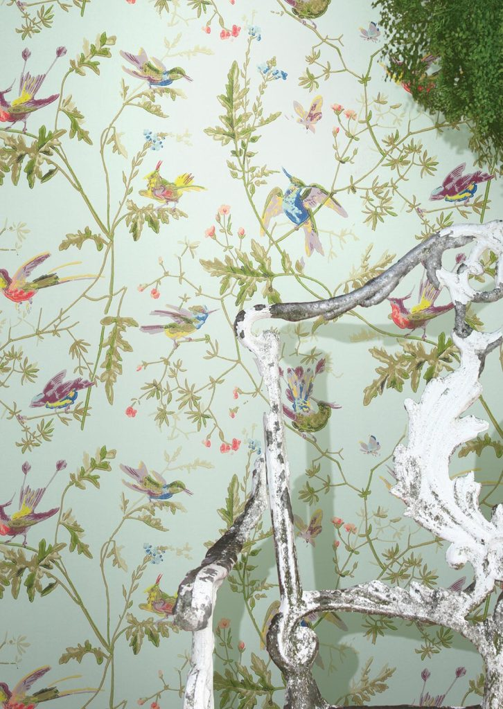 hummingbirds spring wallpaper Cole and son