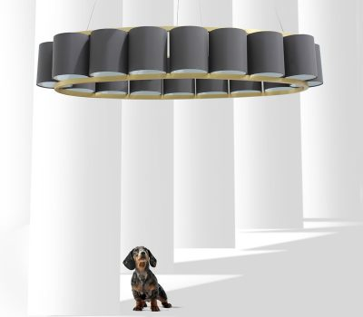 oval light feature with dog